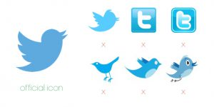 Het enige juiste Twitter logo Flex Online Marketing
